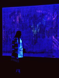 "Seeing Blue. LIGHTSTAGE director Kalina King in artist Jacqueline Humphries ' installation at Art Basel Unlimited 2016 in Basel, Switzerland. The paintings take on a different life when illuminated by black light. """"The more paint that goes on the canvas,"" Jacqueline says, ""the more light there is in the room because the paintings actually create light. There's a kind of thrilling feeling of creating light in the room."""